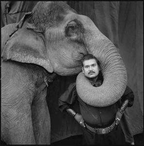 MEM_Hindistan Sirkleri - Ram Prakash Singh fili Shyma ile, Büyük Altın Sirki, Ahmedabad, 1990