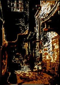 prof-guler-ertan-taramalar-22-02-2005z